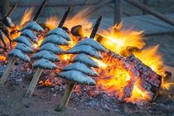 Preparing Fresh Sardines under the Pine Trees of Pure Villa Bicas.