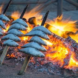 Preparing Fresh Sardines under the Pine Trees of Pure Villa Bicas.