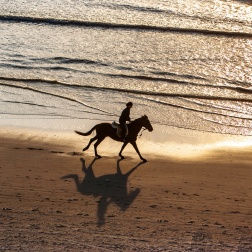 Horse riding at sunset on the endless beaches of Comporta