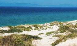 Pure Comporta's Dunes